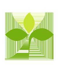 ecology-spirituality