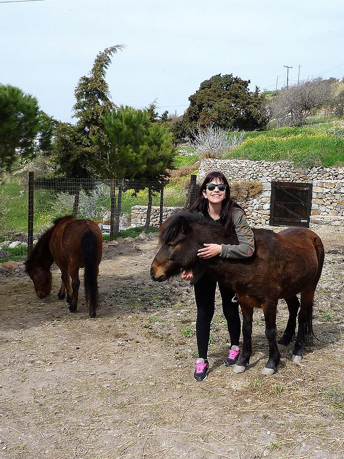 Σκυριανά άλογα